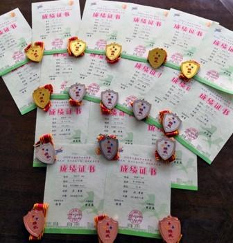 华二武术队参加上海市武术比赛,喜获六金七银三铜!