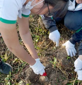 万绿丛中憩秋凩——记2021届学农社会实践